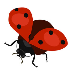 Ladybird flying icon on a white background vector
