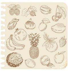 Set doodle fruits vector