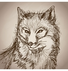 fox portrait forest hand drawing vintage vector image