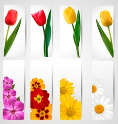 Set of banners with different colorful flower vector image vector image