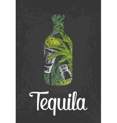 Bottle of tequila with glass cactus salt and vector image