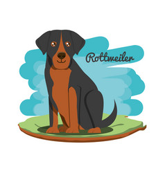 Cute dogs design vector