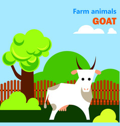 Educational flashcard with goat on the farm vector