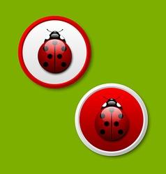 Ladybug icons vector