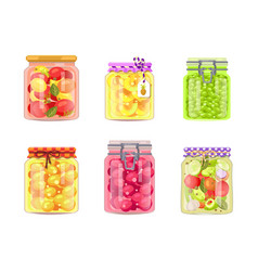 preserved canned vegetables fruit and berries vector image