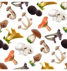 Seamless pattern of various species edible vector