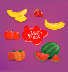summer fruits set on violet background vector image