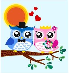 owl bride and groom vector image vector image
