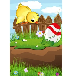 Chicken looks at Easter Egg vector image vector image
