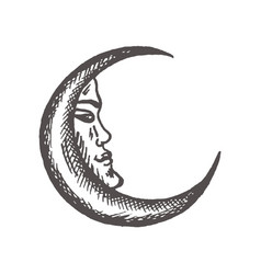 Crescent moon in antique style hand drawn vector