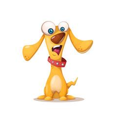 cute dog crazy animals vector image