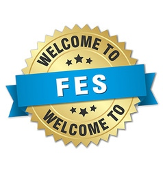 Fes 3d gold badge with blue ribbon vector