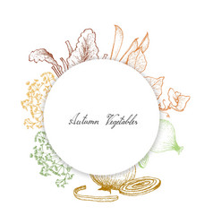 Hand drawn of autumn vegetables and herbs vector