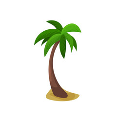 Palm tree colorful vector