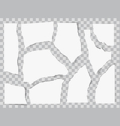 paper torn to pieces vector image