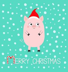 Pig piglet cute cartoon funny bacharacter hog vector