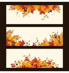 Autumn Banners with Leaves Chestnuts and Ripe vector