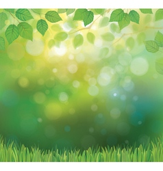 Background spring vector