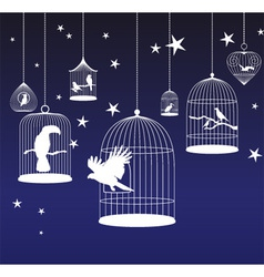 Background with birds cages vector