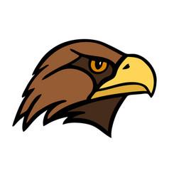 Eagle head a bird prey vector