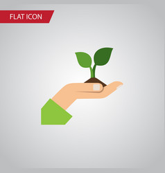 Isolated plant flat icon care element can vector
