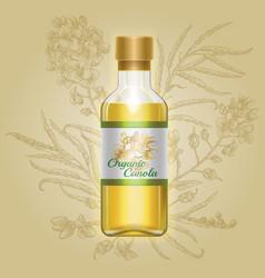 Organic canola mustard oil in glass bottle vector