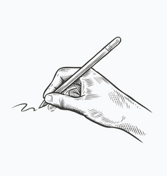 pen in hand sketch drawing writing vintage vector image