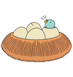 Set of bird nest and egg vector