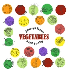 Icons of vegetables in sketch style vector image