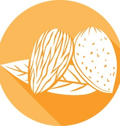Almond with Leaves Icon vector image