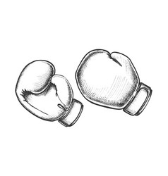 Boxing gloves sportive equipment monochrome vector