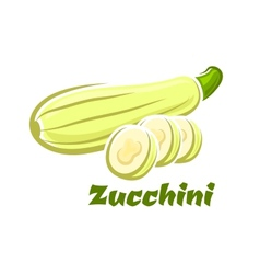 Cartoon whole and sliced fresh zucchini vegetable vector