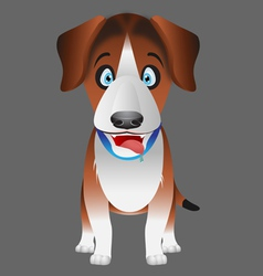 dog beagle facing forward vector image