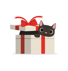 Lovely funny black cat in a gift box vector
