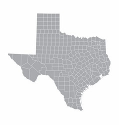Texas state map vector