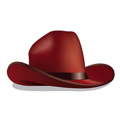 traditional cowboy hat vector image