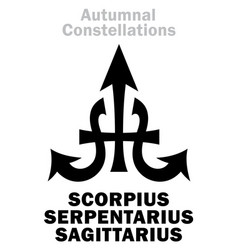 Astrology autumnal constellations vector