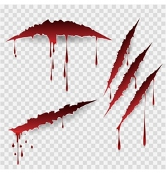 Bloody scratch marks vector