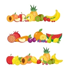 Fruits banner set and berries horizontal poster vector