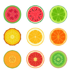 Sliced tropic fruit set collection of round vector