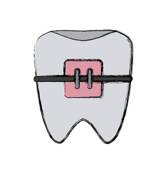 Teeth with brackets vector