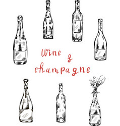 wime champagne bottle and lettering vector image