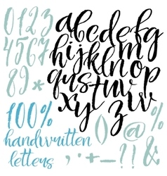 Modern style calligraphic letters vector