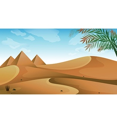 A landscape at the desert vector