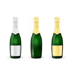 bottles of sparkling wine or champagne with vector image