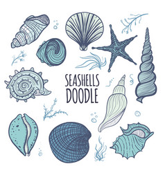 colorful set of seashells on white background vector image