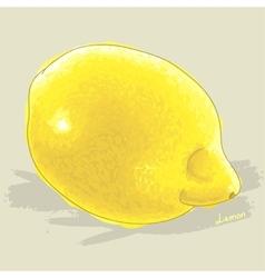 Hand drawn fresh lemon vector image