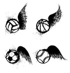 sport grunge balls wings vector image