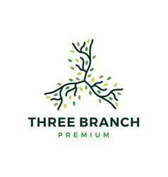 three branch leaf tree logo icon vector image