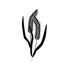 wheat ears black silhouette icon organic vector image